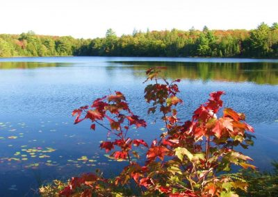 #yoursTOdiscover: My Autumn Experience in Canada